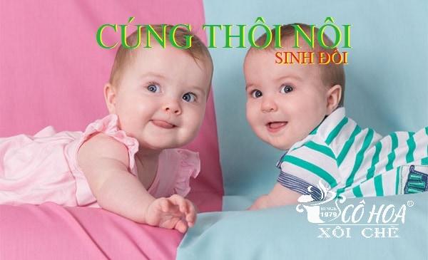 Hình ảnh minh họa cúng thôi nôi cho bé sinh đôi